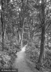 Colwyn Bay, Pwll-Y-Crochan Woods 1921