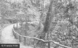 Colwyn Bay, Pwllycrochan Woods c.1950