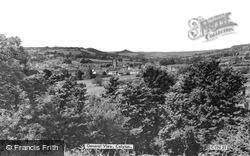 General View c.1965, Colyton