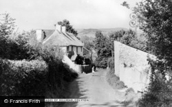 Colyton, The Old Cottages Of Hillhead c.1950
