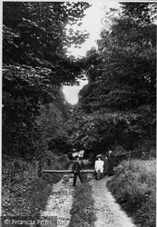 Combe Down, Rainbow Woods 1907