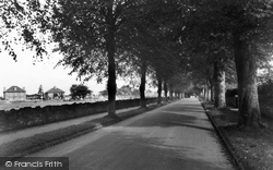 Combe Down, The Avenue c.1955