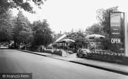 Combe Down, The Rockery Tea Gardens c.1960