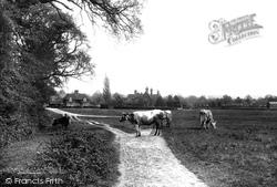 Compton, Common And School 1907