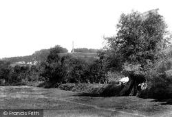 Butleigh Mont 1904, Compton Dundon