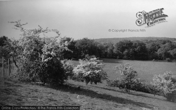 Photo of Compton, The Downs c.1955