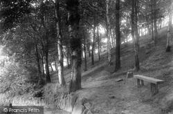 Congleton, Park Woods 1902