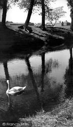 Congleton, The Park c.1955