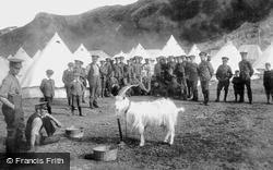 Conwy, Military Goat 1908