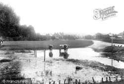 Cookham, The Moor 1901