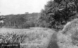Birkacre Woods, Lovers' Walk c.1955, Coppull