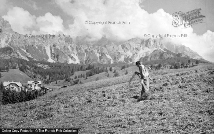 Photo of Cortina, Haymaking 1938