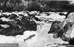Corwen, Salmon Leap c.1965