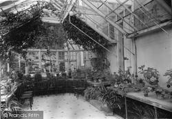 Craigmore, The Conservatory, 'glendermott' c.1955