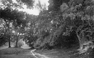 Cranbrook, Angley Park 1925