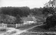 Cranbrook, Angley Woods 1902
