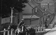 Cranbrook, Cart Horses 1921