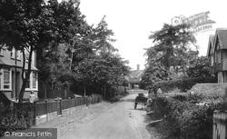 Cranleigh, Knowle Lane 1904