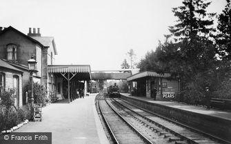 Cranleigh, Station 1908