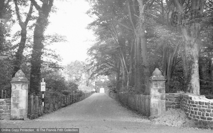 Photo of Craster, The Avenue c.1950