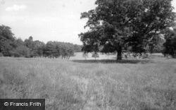 Tilgate Park c.1965, Crawley