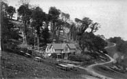 Cremyll, Beechwood Cottage, Mount Edgcumbe 1906