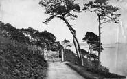 Cremyll, Breakwater From Mount Edgcumbe c.1873