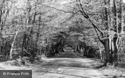 Crockham Hill, The Beeches c.1960