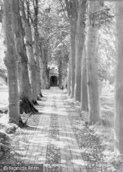 Crondall, The Church Path c.1960
