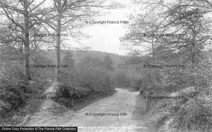 Photo of Crowborough, Pilmer Woods 1900