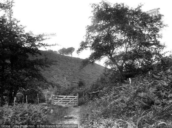 Crowcombe, the Quantock Gate 1929