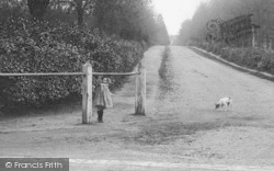 Crowthorne, Broadmoor Avenue, A Girl And A Dog 1908