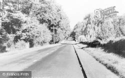 Crowthorne, Dukes Ride c.1955