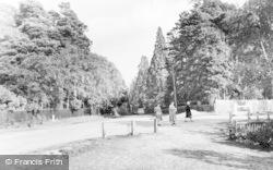 Crowthorne, Wellingtonia Avenue c.1955