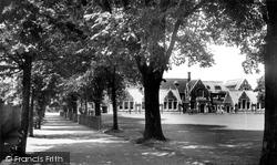 Croydon, Tree Walk, Whitgift Middle School c.1955