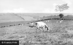 Cuffley, The View From The Ridgeway c.1955