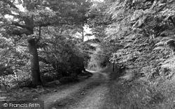 c.1952, Cwmgiedd