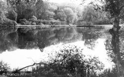 Danbury, Park, The Lakes c.1965