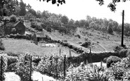 Danehill, view from Sunnybank c1955