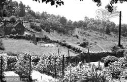 Danehill, View From Sunnybank c.1955
