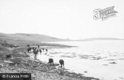 Danna Island, From Mainland 1963