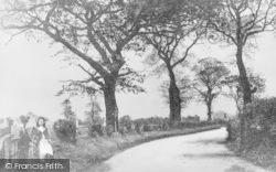 Dartford, Shepherd's Lane c.1890