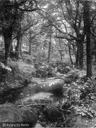 Dartmoor, Becky Falls 1922