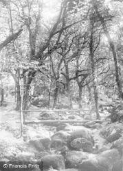 Dartmoor, Becky Falls c.1930