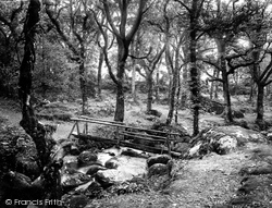 Dartmoor, Footbridge, Becky Falls 1922