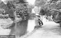 Darwen, By The River, Sunnyhurst Wood c.1950