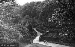 Sunnyhurst Wood c.1950, Darwen