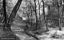 Darwen, Sunnyhurst Wood c.1950