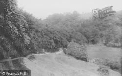 Darwen, Sunnyhurst Woods 1895
