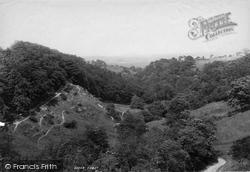 Darwen, Sunnyhurst Woods From The Embankment 1895